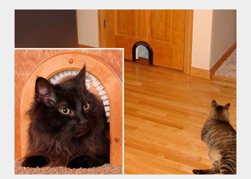 Кошачья дверь в санузел