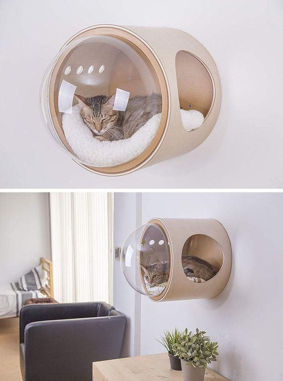 Настенные капсулы для кошек в футуристическом стиле