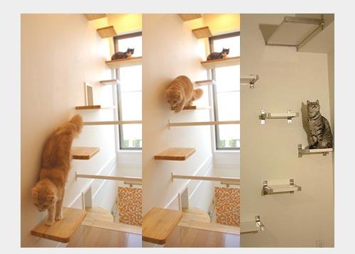 полки для тренировки кошек