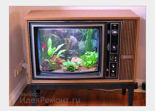 аквариум в современной квартире