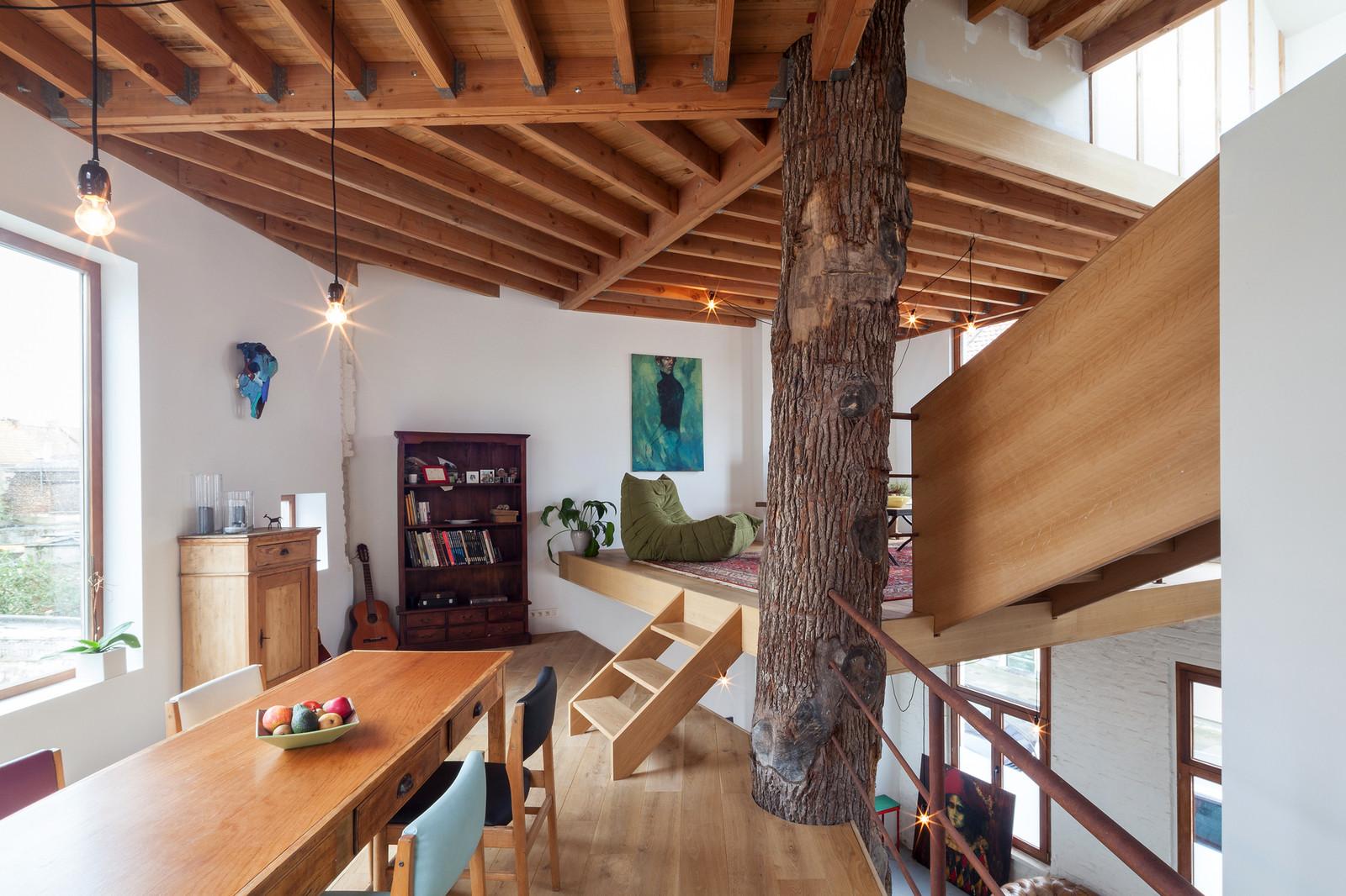 Квартира вокруг дерева. Эко стиль