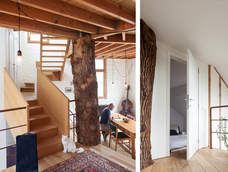 Квартира в эко стиле или как быть, если в квартире стоит дерево ⋆ Новые идеи 2018, фото ⋆ Идеи для дачи, Красивые дома